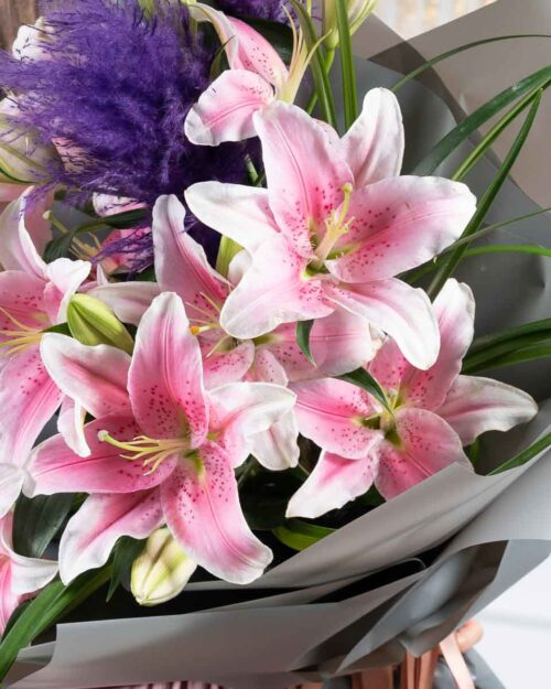 Showy Lily
