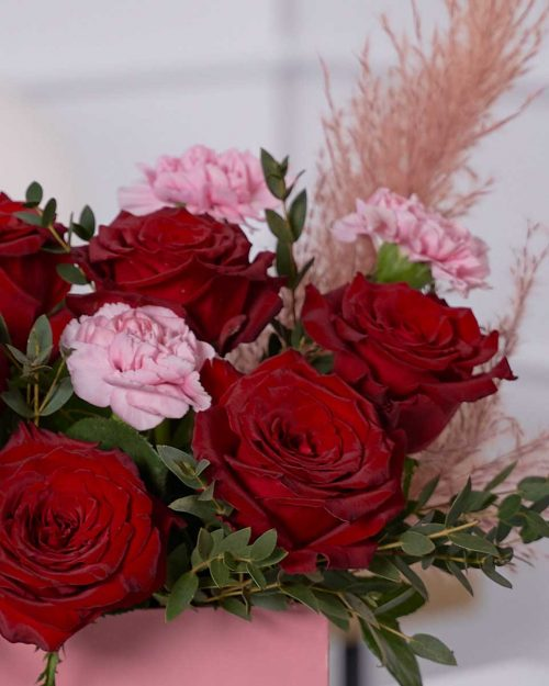 Lovely Red and Pink