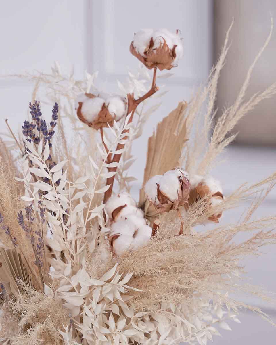dried blooms close up photo