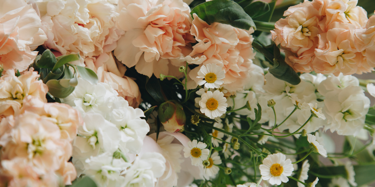 Discover the Meanings Behind Each Popular Flower